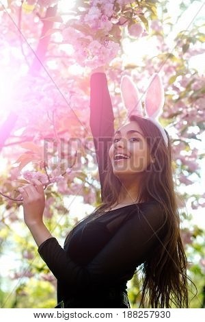 girl or adorable woman smiling with cute bunny ears and long brunette hair at tree with pink blossoming sakura flowers in spring park on sunny day on blurred floral environment. Easter. Springtime