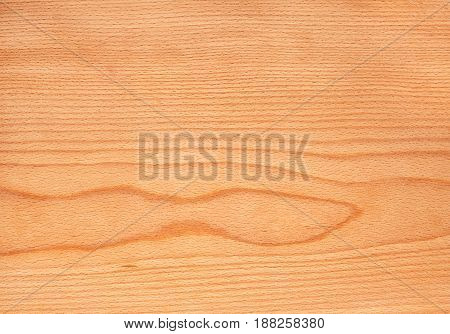 Natural Beech Wooden Texture, Tree Veneer Background