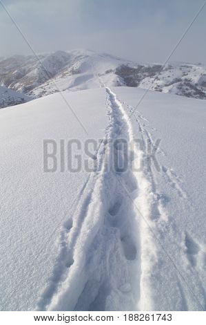 Trail in the snow in the mountains .