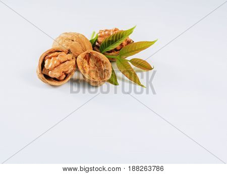 walnut kernels with green leaves on the white background.