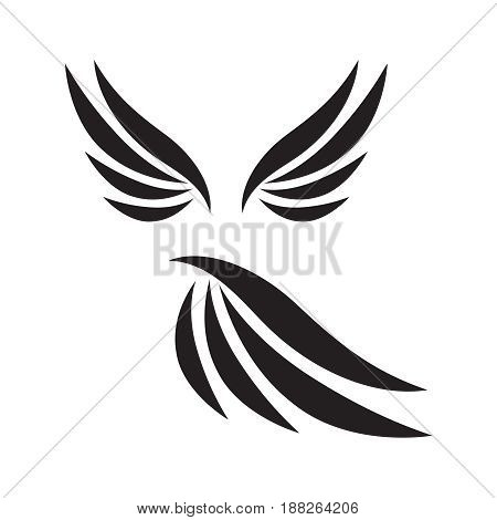Vector wings isolated on white background. Collection of wings birds illustration