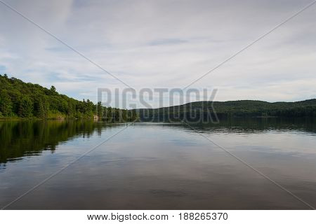 Beautiful forest lake under blue cloudy sky on summer day