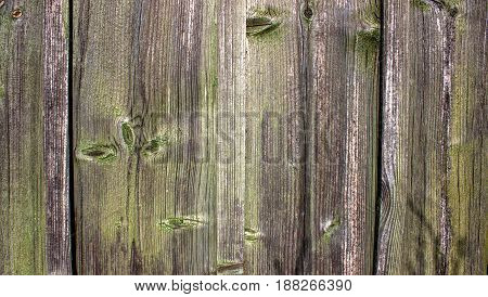 Old Solid Wood Slats Rustic Shabby Isolated Background. Painted Peeled Grunge Weathered Isolated Hardwood Surface. Faded Natural Wood Board Panel.