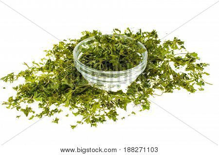 Dried parsley on white background. Studio Photo