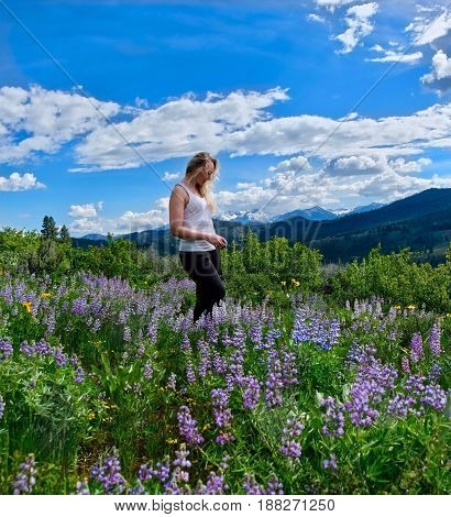 Woman hiking in meadows in bloom. Banff Natianal Park. Alberta. Calgary. Canada.