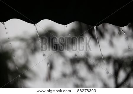 abstract blurred background image of eaves with raining