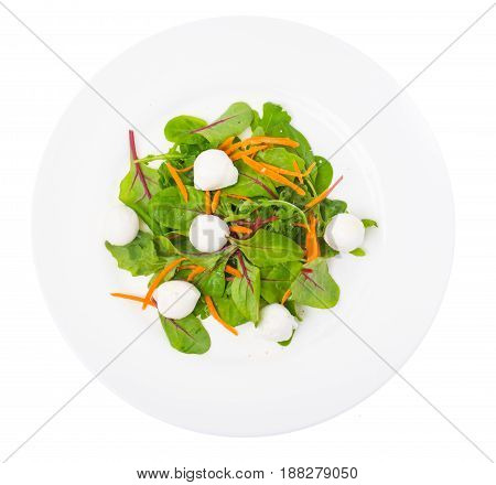 Dietary food salad with fresh herbs with mozzarella. Studio Photo