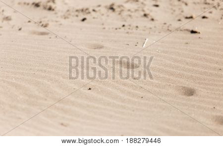 A footprints in the sand . A photo