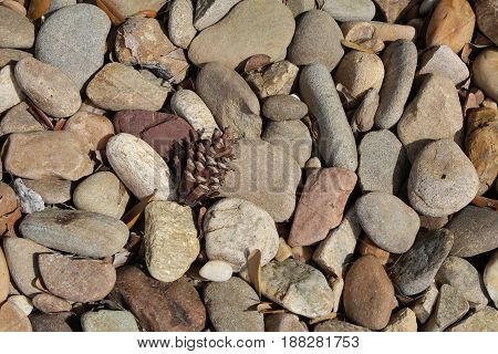 Rock and stone landscaping in flower bed