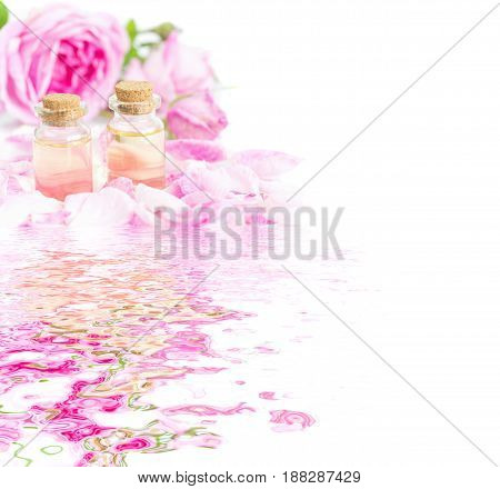 Two vials of rose essential oil pink roses and rose petals isolated on a white background reflected in the water surface with small waves with copy-space