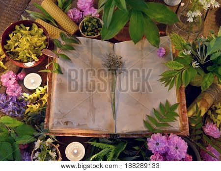Still life with open book on table with healing herbs and candles. Alternative medicine vintage concept