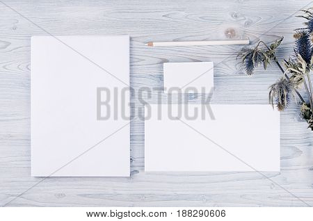 Corporate identity template stationery with dry flower on soft light blue wooden board. Mock up for branding graphic designers presentations and portfolios.