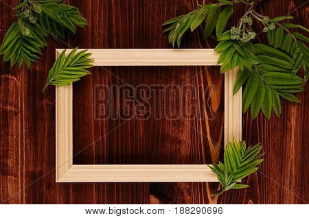 Blank photo wood frame and young green leaves on vintage brown wooden board. Decorative summer background with copy space top view.