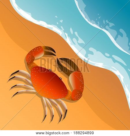 The illustration on a beach theme. Summer vacation by the sea. The crab on the sand. Sea surf . Vector Image.