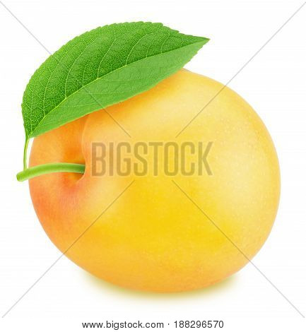 Ripe yellow plum with green leaf isolated on a white