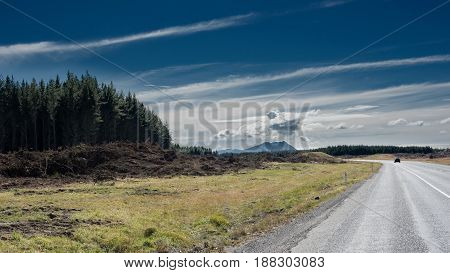 Road through the countryside bordered by a forest blue cloudy skies in new zealand