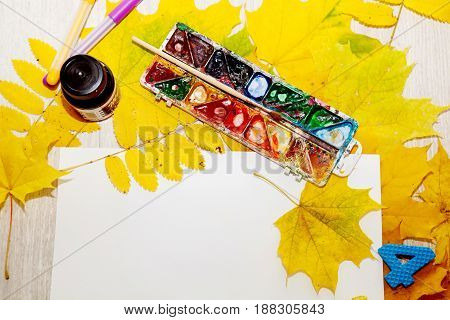 Brushes, watercolors, album, tools for the artist's creative work on a wooden background in autumn yellow leaves