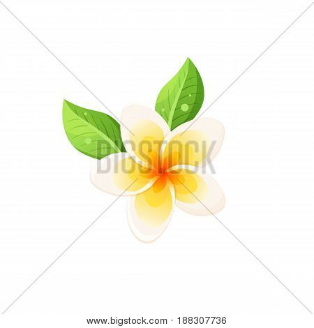 Bright cartoon frangipani icon. Colorful tropical flower symbol isolated on white background. Vector illustration.