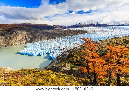 Torres Del Paine National Park Chile. Grey glacier.