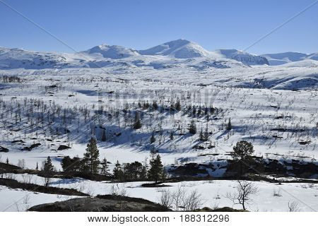 View over some of the Swedish mountains near the border to Norway in the North of Sweden with a clear blue sky in background.