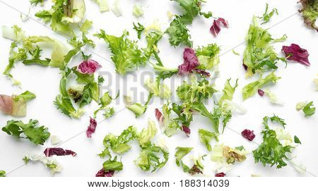Wide food background. Mix lettuce, arugula and red cabbage on white backdrop.