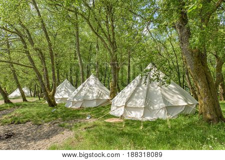 Bell tents at erected at a woodland beside Loch Voil in the Loch Lomond and Trossachs National Park in Scotland.