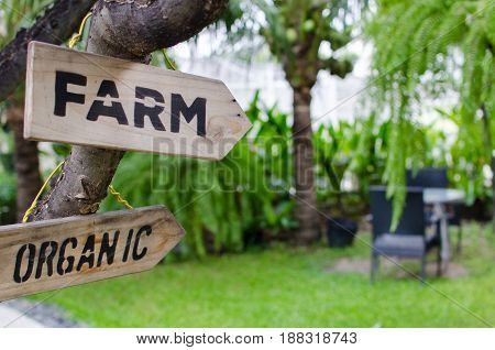 FARM and ORGANIC wooden signs with view of bench in the garden selective focus