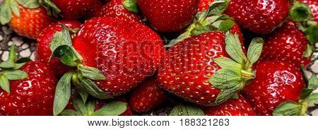 background from fresh ripe useful fruit strawberry closeup, border design panoramic banner