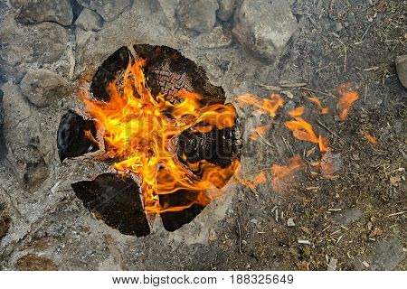 Top view of a burning fire from a single log.. The construction of a fire is called a Finnish candle.