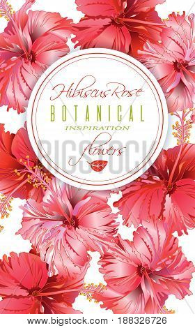 Vector red tea vertical banner with hibiscus flowers on white background. Botanic frame. Design for packaging, tea shop. Can be used as greeting card and wedding invitation. With place for text