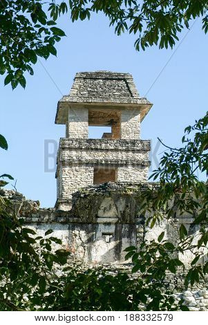 Ruins Of Palenque, Maya City In Chiapas