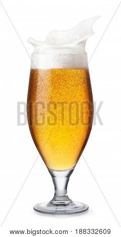 glass of lager beer with bubbles and splashing foam isolated on white background. Beer splash. Glass goblet with beer up. Pub alcohol drink