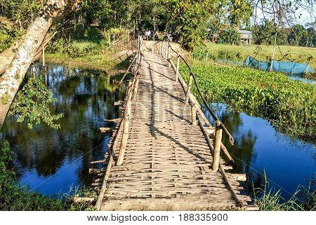 Wooden footbridge / walkway / pathway / boardwalk