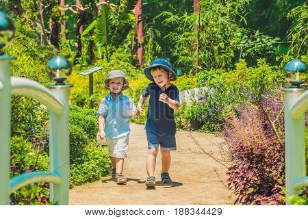Two happy brothers running together on a park path in a tropical park.