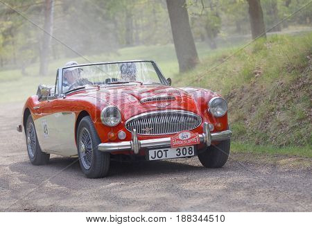 STOCKHOLM SWEDEN - MAY 22 2017: Red and white Austin Healey 3000 MK III classic car from 1967 driving on a country road in the public race Gardesloppet in the forests at Djurgarden Stockholm Sweden. May 22 2017