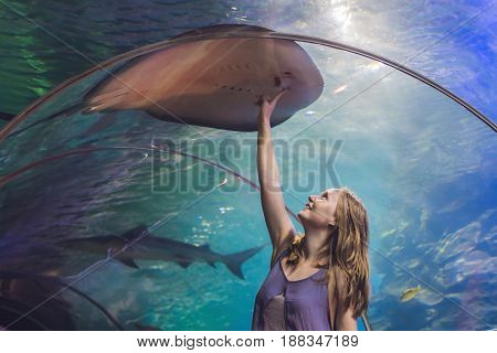 A Young Woman Touches A Stingray Fish In An Oceanarium Tunnel
