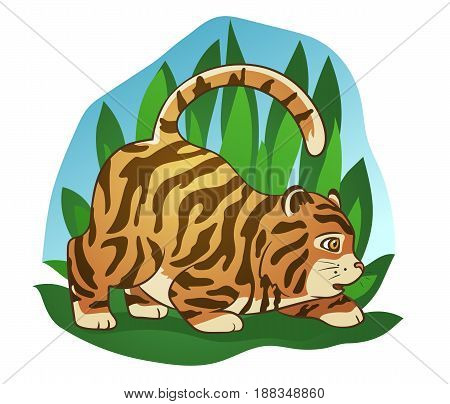 Hand drawn picture of a cute fat little tiger sneaking in the jungle cartoon vector illustration