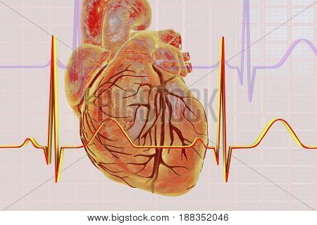 Electrocardiogram, ECG medical background with heart. 3D illustration