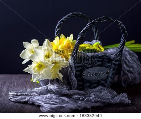 Bouquet of white and yellow daffodils. Flowers in the basket. Dark background. Horizontal image