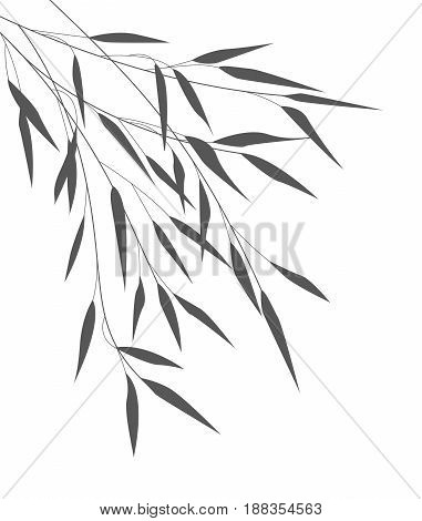 Vector Illustration bamboo leaves. Background with black leaves