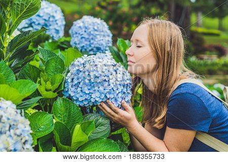 Young Woman Enjoying The Scent Of Hydrangea. Girl Resting Near A Bush Hydrangea. Hydrangea
