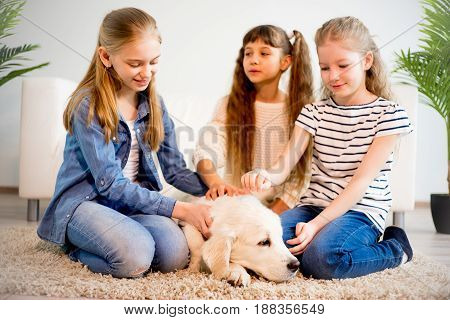 A portrait of children playing with their dog at home