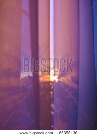 Beautiful sunset view through the curtains and flower.  Abstract background.