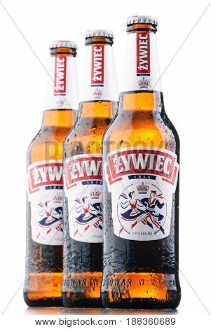 POZNAN POLAND - MAY 17 2017: Zywiec Beer is a pale lager which has been brewed in Poland by Zywiec Group owned by Heineken International since 1994