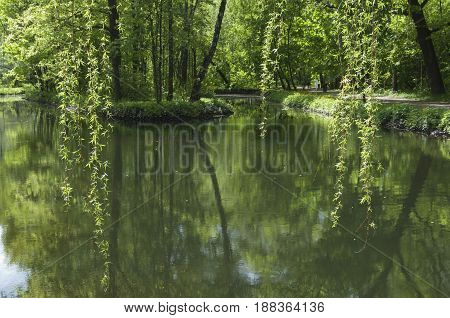 Landscape with a pond in Sokolniki park Moscow Russia