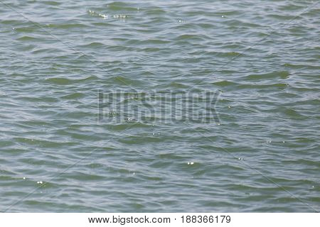 Background of the surface of the water.