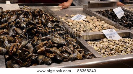 Mussels on the market counter. A lot of seashells on the bazaar for trade. Trading wholesale