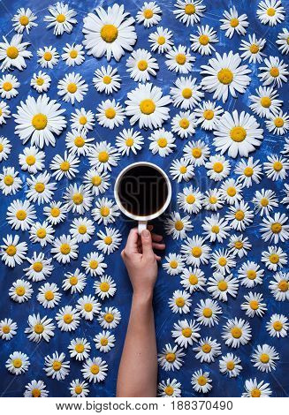 Hello summer. A cup of coffee in a woman's hand on a blue background with chamomile or daisies. The concept of the arrival of summer mood and heat. Creative food background. Flat lay composition.