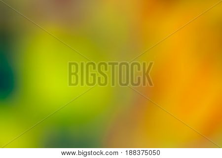 Abstract background de-focused photo with green orange and yellow. Watercolor painting effect with colors merging into each other and space for text.