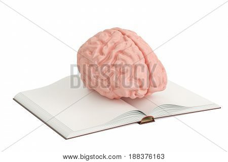 Opened blank book with human brain 3D rendering isolated on white background